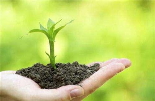 广东土壤检测助力生态环境质量持续好转?