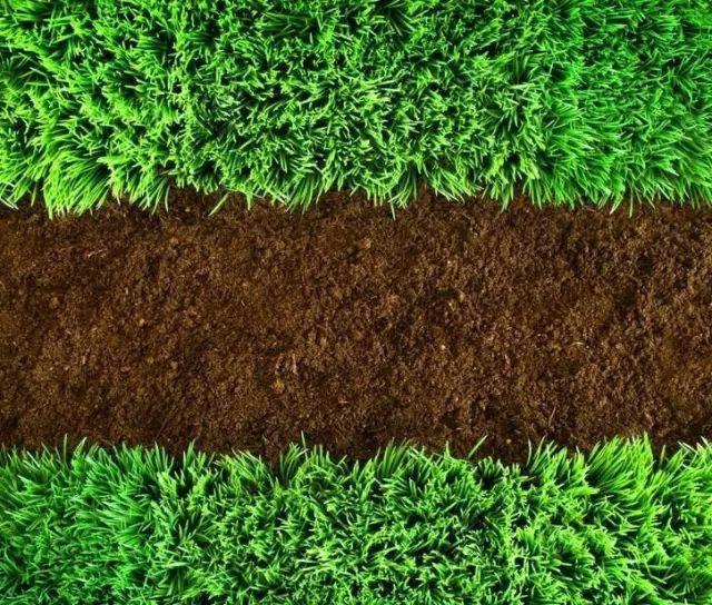 土壤检测后如何评价土壤环境质量?